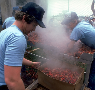 Boiling crawfish at a Texas Festival