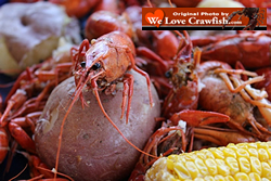 Always insist on crawfish harvested in the USA ... be alert for foreign imports