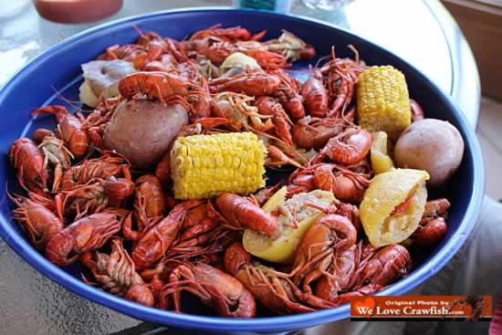 Enjoying the ultimate boiled crawfish feast!